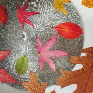hoe pers je herfstbladeren