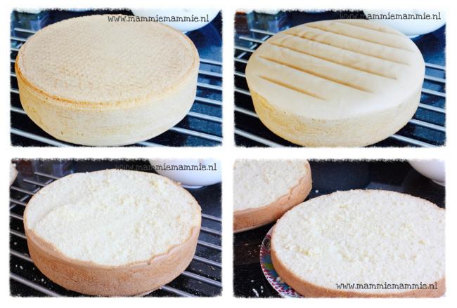taartbiscuit maken